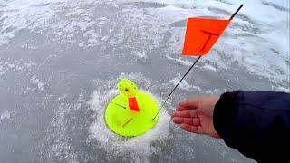 Лёд тает Рыбалка на жерлицы в траве Ловля щуки со льда Зимняя рыбалка 2020 2021