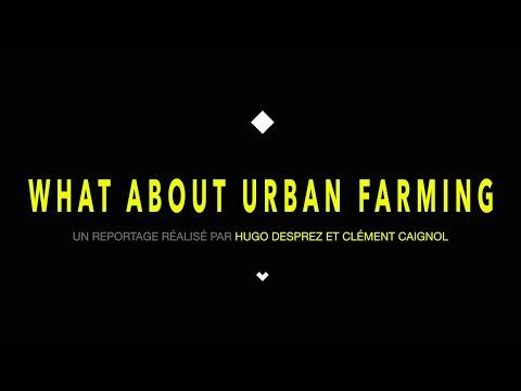 WHAT ABOUT URBAN FARMING ? L'agriculture Urbaine à Singapour