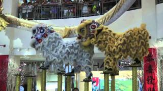 Video Lion Dance - Bangsar Village 2 download MP3, 3GP, MP4, WEBM, AVI, FLV Agustus 2018