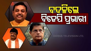 BJP VP Jay Panda Appointed In-Charge For Delhi, Assam; D. Purandeswari To Look After Odisha