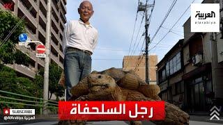 رجل وسلحفاته العملاقة يحظيان بشعبية كبيرة في طوكيو