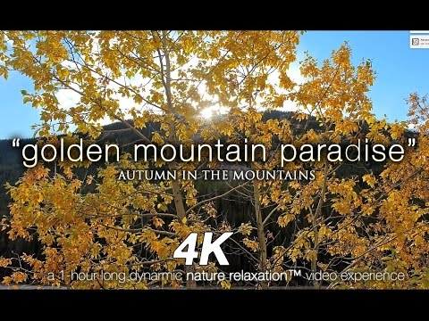 """4K Nature + Music: """"Golden Mountain Paradise"""" Ft Darshan Ambient Nature Relaxation Video"""