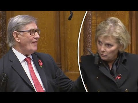 Sir Bill Cash puts Soubry in her place during heated Brexit clash in the Commons