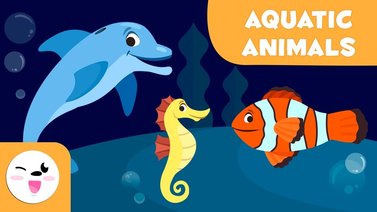 Aquatic Animals for kids - Vocabulary for kids - YouTube [ 720 x 1280 Pixel ]