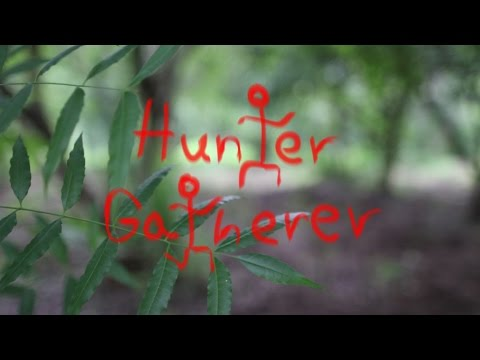 Hunter & Gatherer