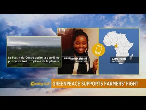 SG Sustainable Oils sued over land grabbing in Cameroon [The Morning Call]