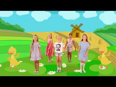 Видео урок танец маленьких утят