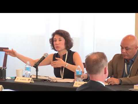 Panel 2 – Class of 2006 War Studies Conference (March 2018)