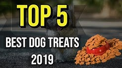 ✅ TOP 5: Best Dog Treats 2019