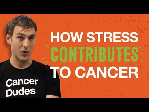 How Stress Contributes To Cancer. Chris Wark (Chris Beat Cancer)