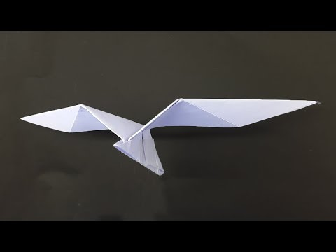 How to make a Paper Airplane - Best Paper Planes as like a Bird