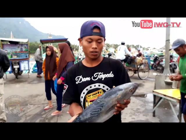 Jember || Suasana Ramai Di Pasar Ikan Puger
