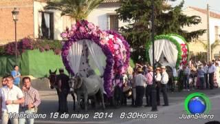 Romeria de San Isidro, Montellano 2014 4ªp JSillero