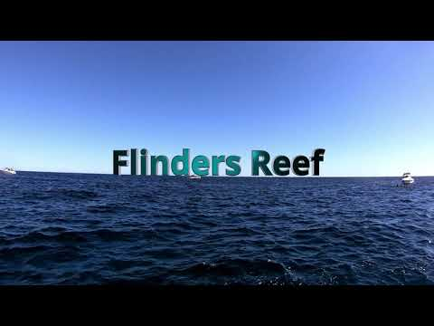 Scuba Dive The Cementco Wreck And Flinders Reef  06-05-19