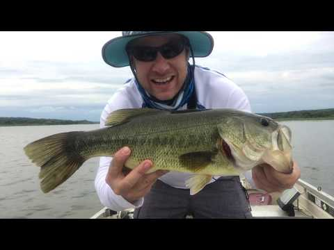 HUGE BASS on a Giant Worm!!!