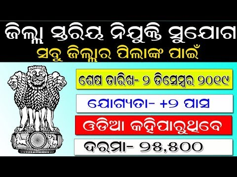 ଜିଲ୍ଲା-ସ୍ତରୀୟ-ନିଯୁକ୍ତି-ସୁଯୋଗ-।-ସବୁ-ଜିଲ୍ଲାର-ପିଲାଙ୍କ-ପାଇଁ-।-district-level-job-in-odisha