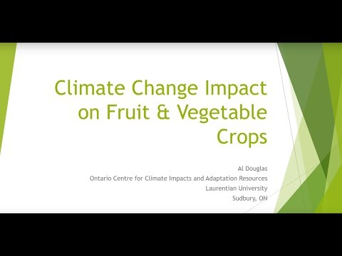 Climate Change Impact on Fruit and Vegetable Crops