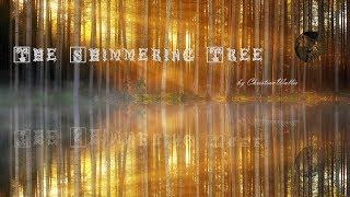 The Shimmering Tree -- A Creepypasta Read