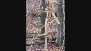 The Squirrel-a-whirl (tm) Squirrel Feeder