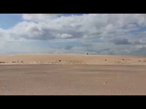 The Athabasca Sand Dunes