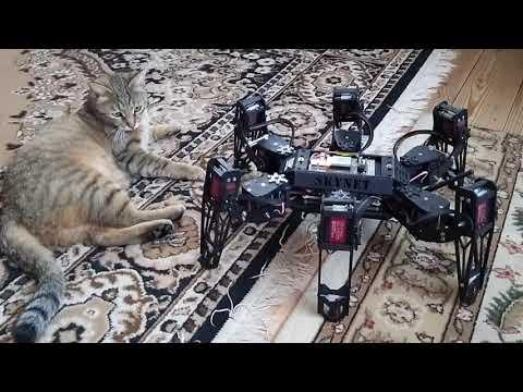 b6a266da9506 Menos mal que cuando los robots asolen la tierra
