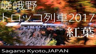 嵐山 嵯峨野トロッコ列車の紅葉2017 Autumn Leaves in Kyoto,Japan thumbnail