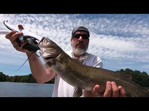 CATFISH On A Fin Spin Crappie Magnet At DALE WALBORN Reservoir - NE Ohio