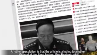 Army Newspaper: Tiger Behind Zhou Yongkang will be Hunted Down