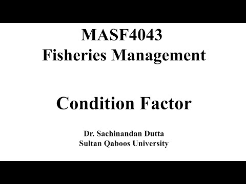 Condition Factor Of Fish