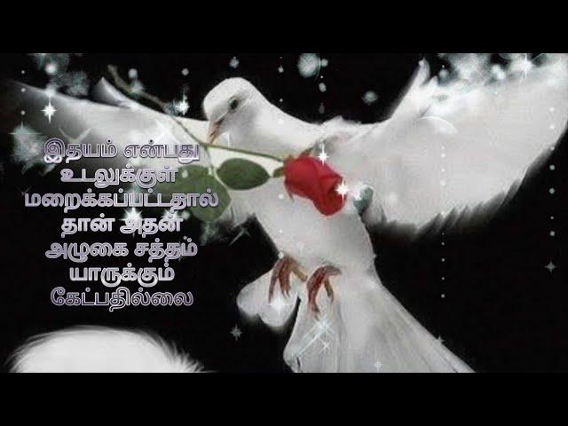 Tamil love kavithaigal... 💕புது வெள்ளை மழை 💕