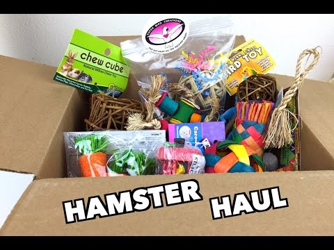 DRS FOSTER AND SMITH HAMSTER HAUL