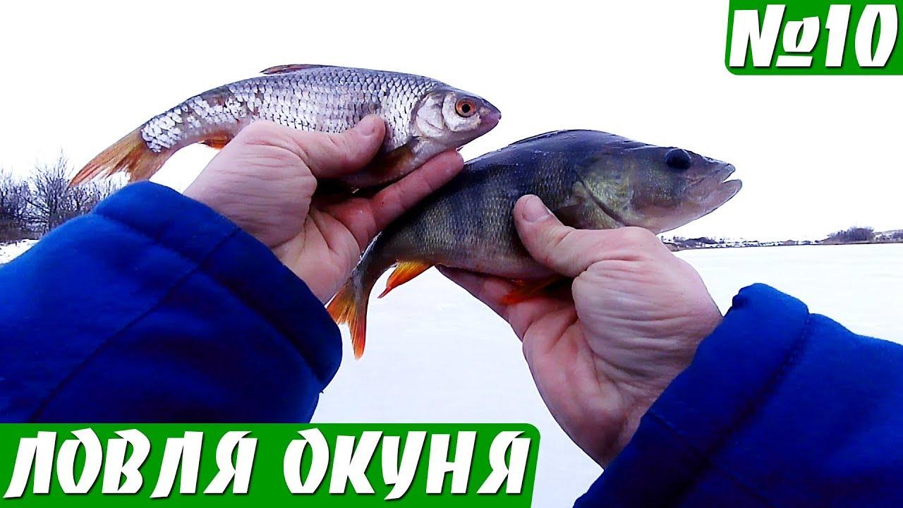 Рыбалка на Глубокой реке. Ловля окуня и плотвы.