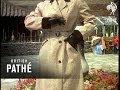 Raincoat Fashions (1956)