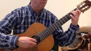 Juan Antonio Muro: Oliivipuut (Vesa Teittinen, kitara)