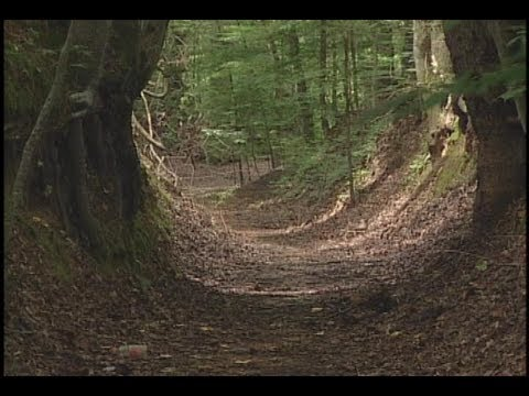 Natchez Trace State Park Tennessee 2002