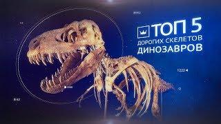 Самые дорогие скелеты динозавров. Аукцион Виолити 0+