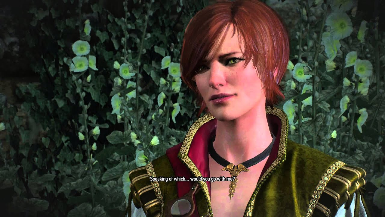 Image result for witcher 3 shani