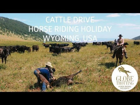 Horse riding holiday cattle drive in Wyoming - courtesy of Globetrotting