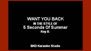 5 Seconds Of Summer - Want You Back (Karaoke with Lyrics)