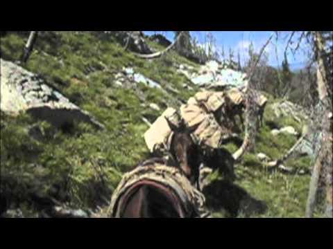 Frank Church Wilderness Idaho Mule Packing