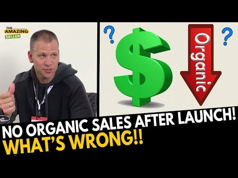 No Organic Sales after Launch…What Am I Doing WRONG? (HOT SEAT) TAS 488: The Amazing Seller