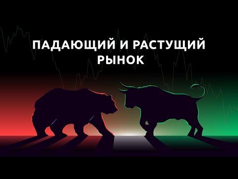 Быки и медведи: как зарабатывать на падающем и растущем рынке