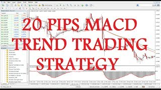20 PIPS MACD TREND TRADING STRATEGY