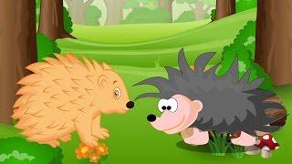 Các con vật cho bé | em học nói tiếng kêu con nhím con gấu | Dạy trẻ thông minh sớm