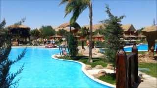 Albatros jungle aqua park отель египет часть 1