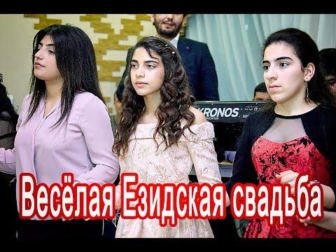 #Езидская DAWATA Весёлая, красивая свадьба