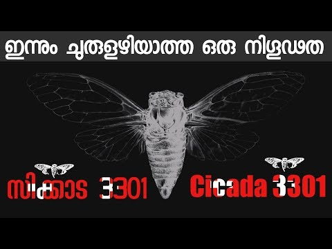 Cicada 3301 A Mysterious Secret Organization And Hardest Internet Puzzle | Malayalam |How it Solved?