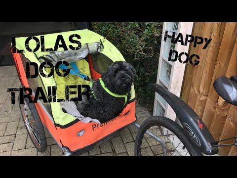 Lola's Dog Puppy Trailer, she loves a bike ride, Trip to Aylestone Meadows