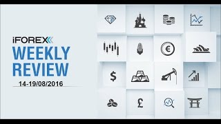 iFOREX Weekly Review 14-19/08/2016: USD, Nestle and S&P 500.