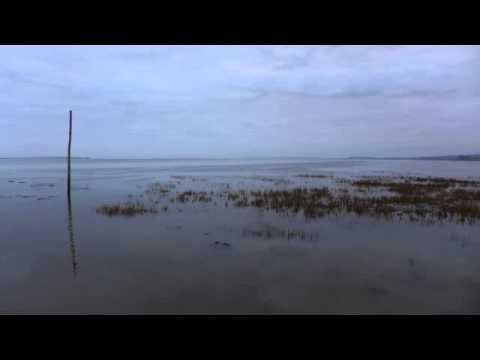 01 Chris Watson - Winter [Touch]